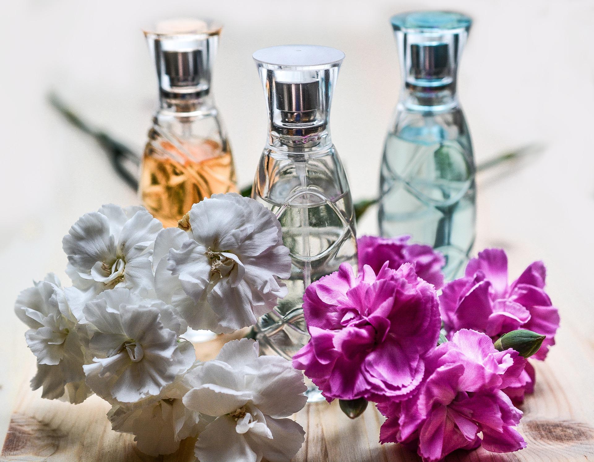 perfume-parfemi-pocetna