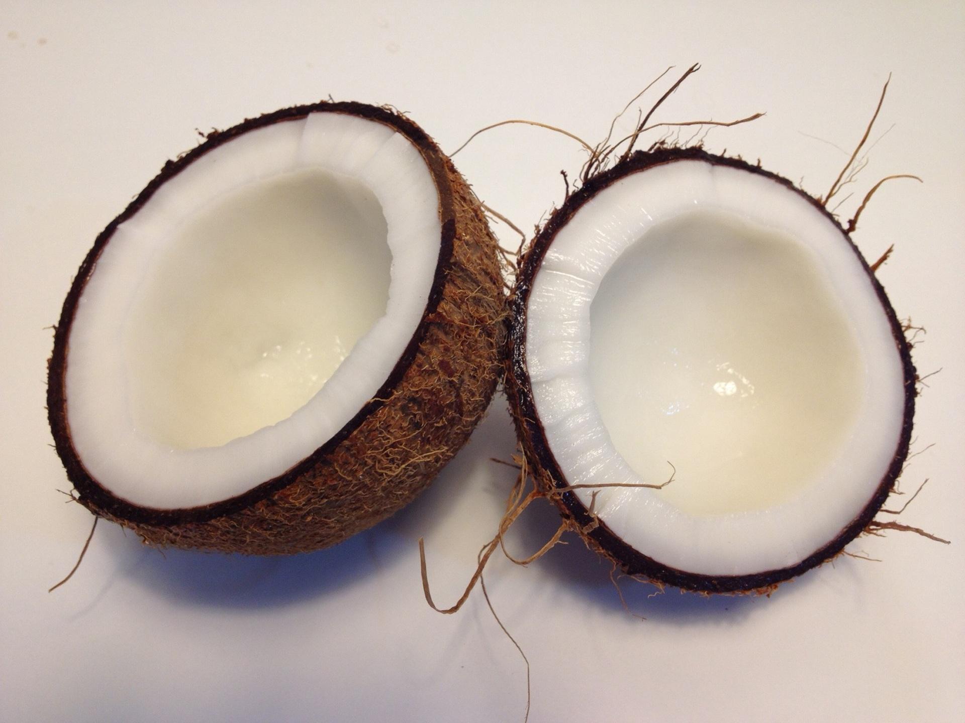 kokos-coconut-pocetna