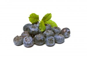 blueberries-borovnice-borovnica