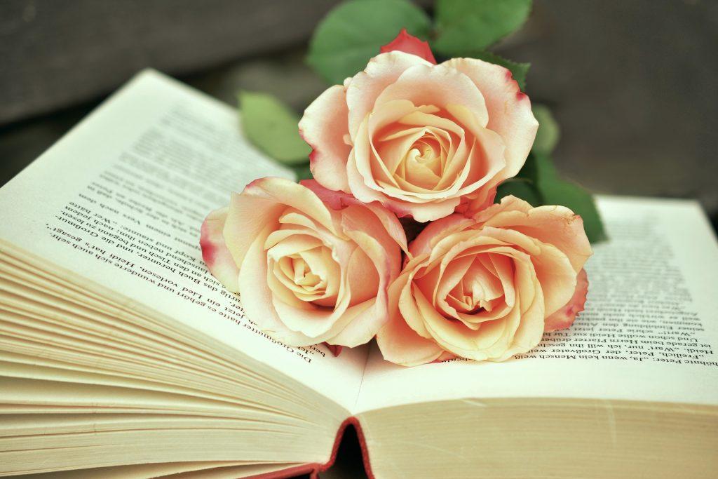 book-rose-pocetna
