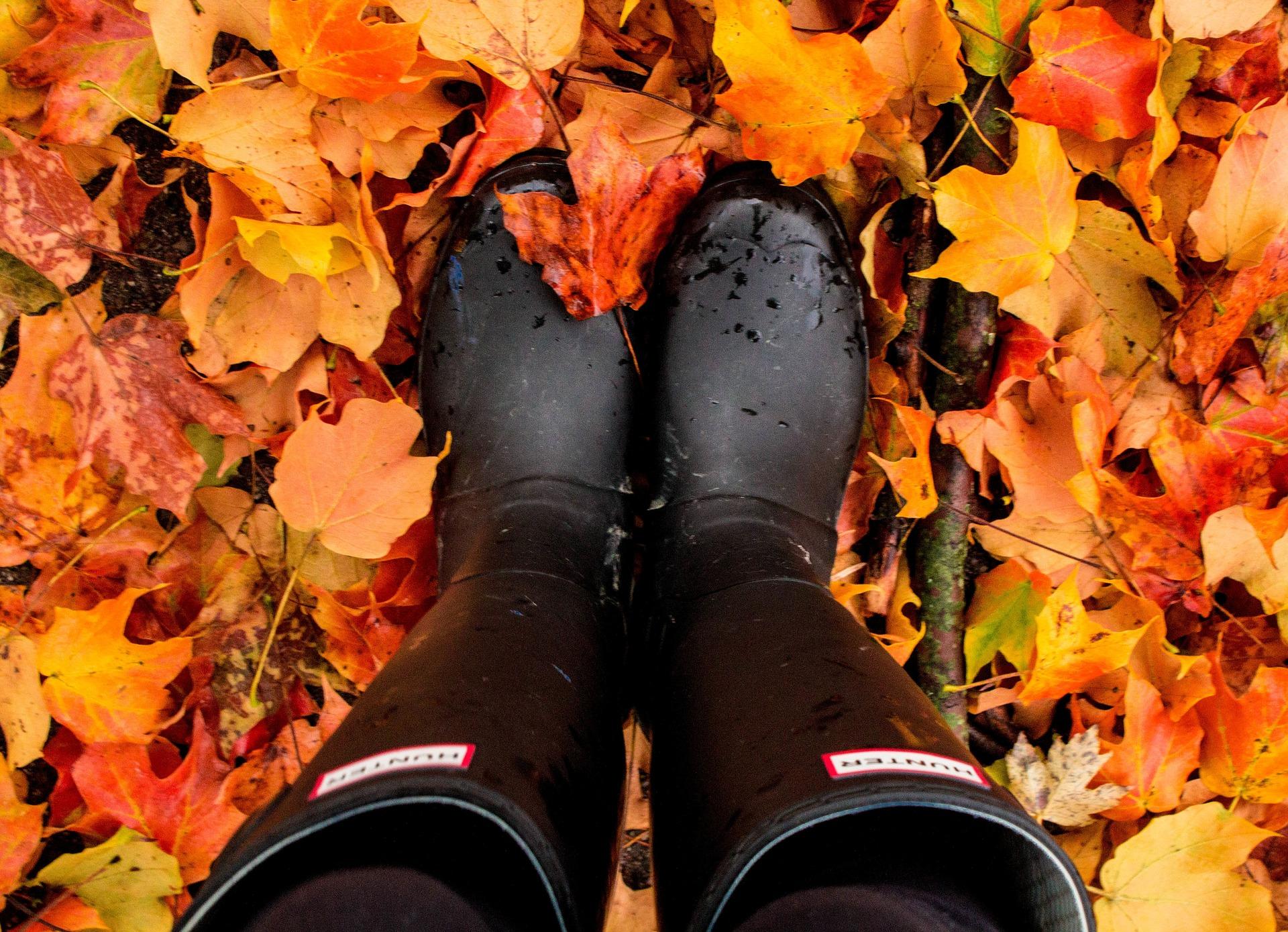 boots-fall-čizme